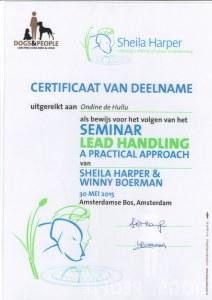 20150530 certificaat