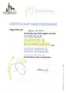 20150823 certificaat