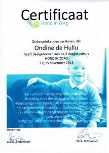 20151115 cursus Hond in Zorg