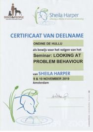 20191110 certificaat Problem Behaviour