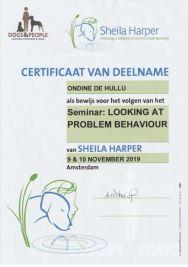 20191110 certificaat Problem Behaviour